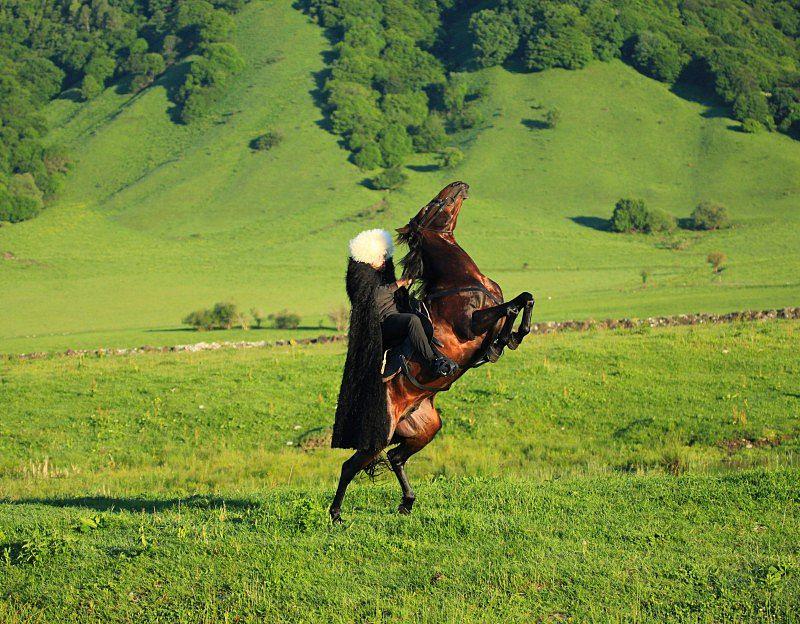 высоким картинки джигитов на коне платьях